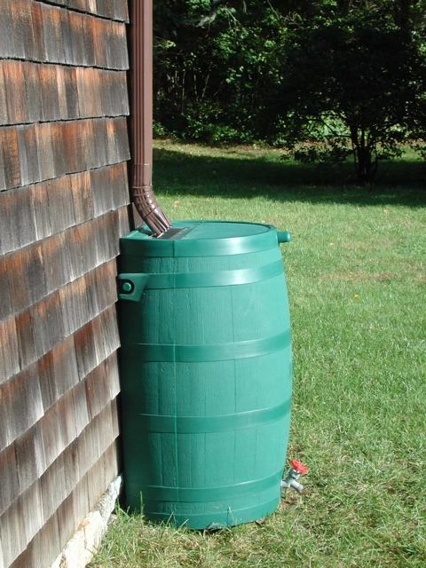 RTS Flat-Back Green Rain Barrel